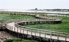 Boardwalk08-280x173